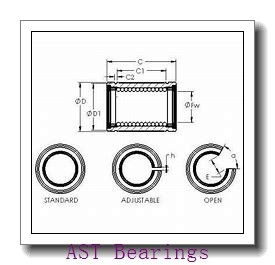 AST AST20  WC11IB plain bearings