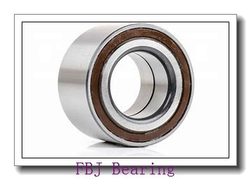 65 mm x 140 mm x 33 mm  FBJ NU313 cylindrical roller bearings