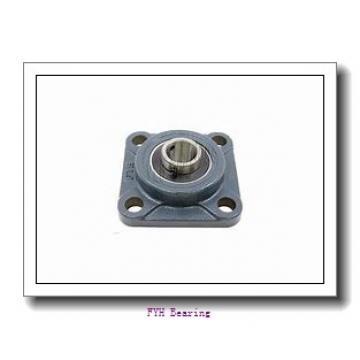 FYH NANF202-10 bearing units