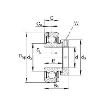 INA GRA107-NPP-B-AS2/V deep groove ball bearings