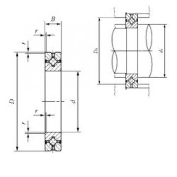 250 mm x 310 mm x 25 mm  IKO CRBH 25025 A UU thrust roller bearings