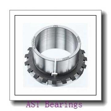 AST GAC30S plain bearings